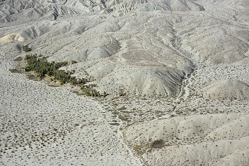 california nature desert palm oasis sanandreasfault coachellavalley fault geology sanandreas aerialphotograph coachellavalleypreserve riversidecounty indiohills banningfault willispalms
