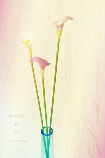 beauty is...