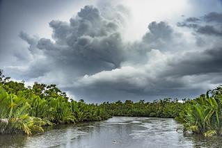 Kalimantan Borneo | by Marc Veraart