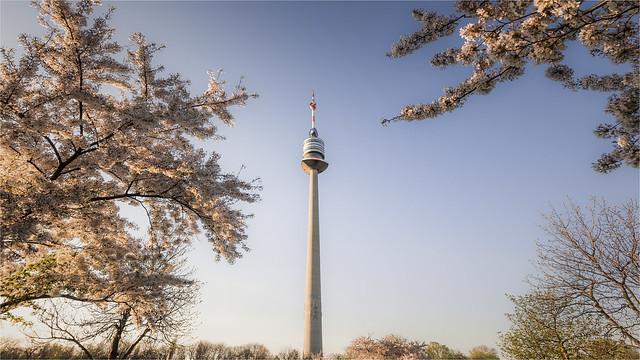 _DSC0390 Spring in Vienna - Danube Tower / Austria