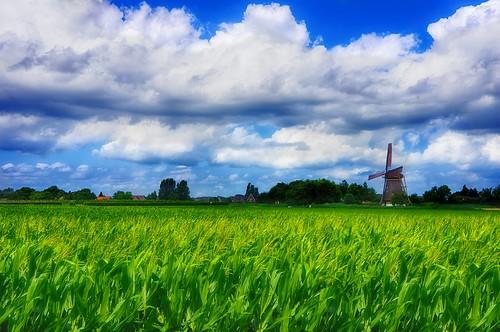 world old sky windmill field corn day glow cloudy softfocus scape tlp trekker sharpfocus worldtrekker tomapped e1855mmf3556oss perfecteffect clouddetails greenyellowtone