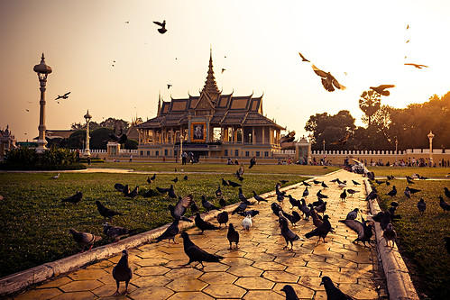 Pidgeon Palace | by Gypsy on a journey