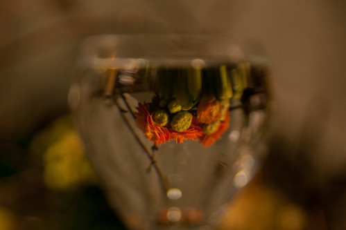 behind the wine glass | by HPKoepping