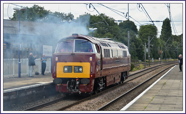 Tuesday 20th August 2013 London Acton Main Line  D1015 WESTERN CHAMPION working 0Z52 old oak common tyesley