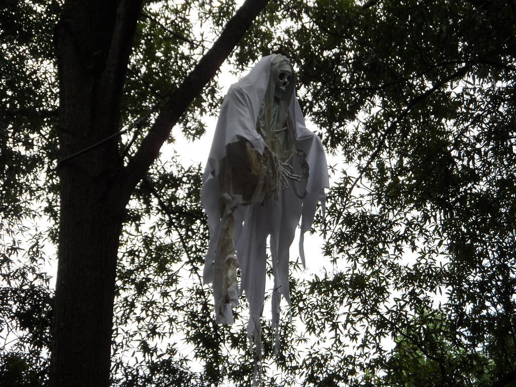Sam 0073 busch gardens williamsburg halloween - Busch gardens williamsburg halloween ...