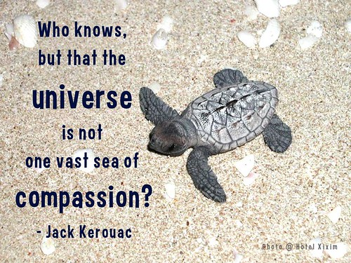 Who knows, but that the universe is not one vast sea of compassion? - Jack Kerouac @HotelXixim