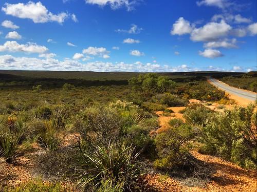 wa outback westernaustralia kwongan iphone6