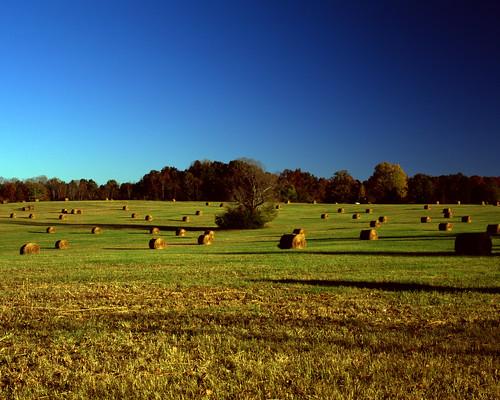 asahipentax 6x7 smcpentaxtakumar6x790mm28 fujifilmvelvia100 clearsky bluesky field hay