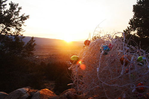 christmas sunset desert tumbleweed silouhete desertchristmas christmastumbleweed