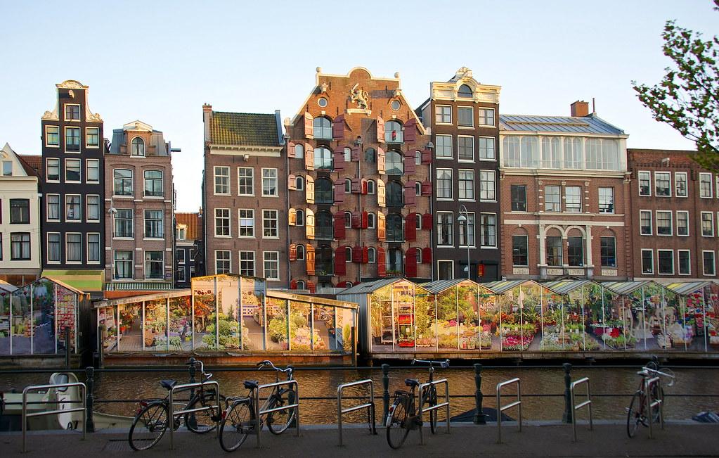 4 انشطة سياحية يمكن التعرف عليها بسوق الزهور العائم في امستردام