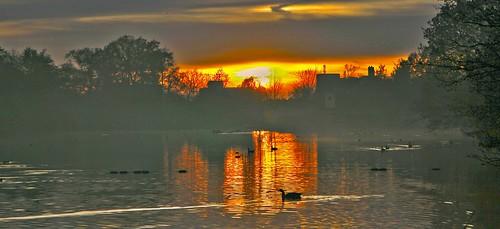 uk light sunset sun sunlight reflection london nature water silhouette reflections wildlife parks sunsets ilford waterreflections reflectionsinwater londonparks valentinespark gantshill uknature londonnature ukparks