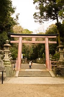 Tori gates to Kasuga-taisha | by hey tiffany!