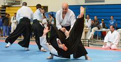Artes marciales-152