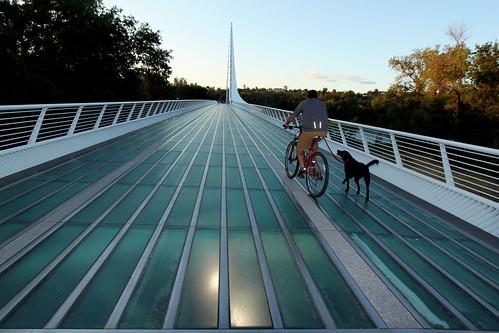 california ca bridge sunset dog sun glass bike walking ride dusk bottom dial sundial redding bicyle konomark