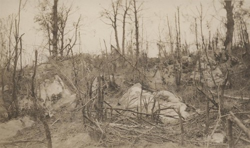 White Boulders, Belleau Wood, circa 1918 | by Archives Branch, USMC History Division