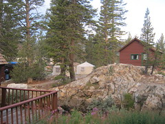 Tioga Pass Resort rents yurts and cabins  8--27-13  - It's in the national forest not Yosemite National Park.