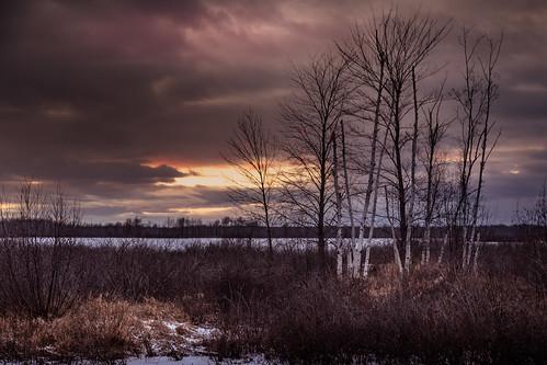 kawkawlin flooding midmichigan wildlife birches trees lake pond creek dam sundown clouds dark canoneos5dmarkiv