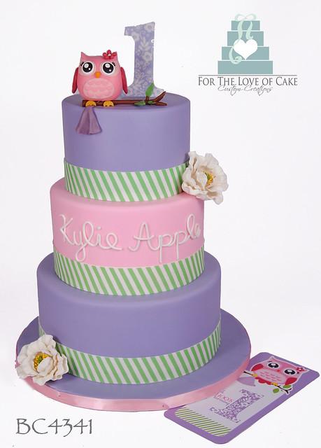 BC4341-owl-first-birthday-cake-toronto