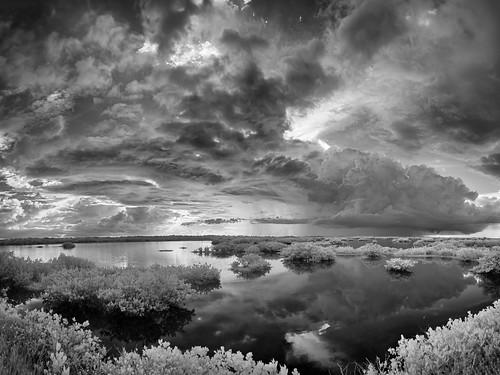 autumn sky blackandwhite bw panorama usa cloud white storm black reflection tree fall water weather landscape ir florida mangrove infrared titusville centralflorida merrittislandnationalwildliferefuge swampmarsh minwr blackpointwildlifedrive bpwd