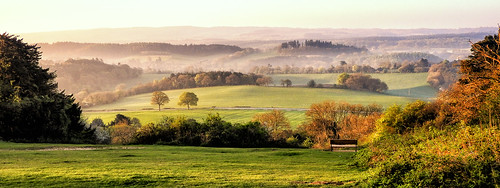 albury england unitedkingdom gb newlandscorner northdownsway