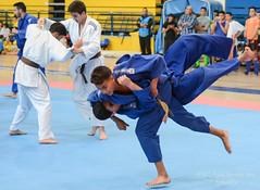 Artes marciales-78