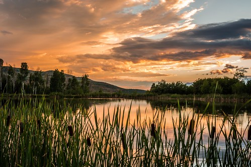 sunset orange mountain lake color reflection green water colors grass skyline clouds landscape utah pond heber august canyon valley grasses aspen midway pinetrees reflectingpond pondlake d7100 august2013