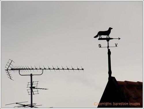 aerial & weather vane