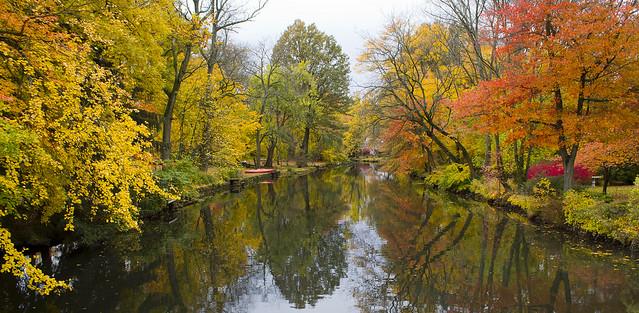 Grand River Fall