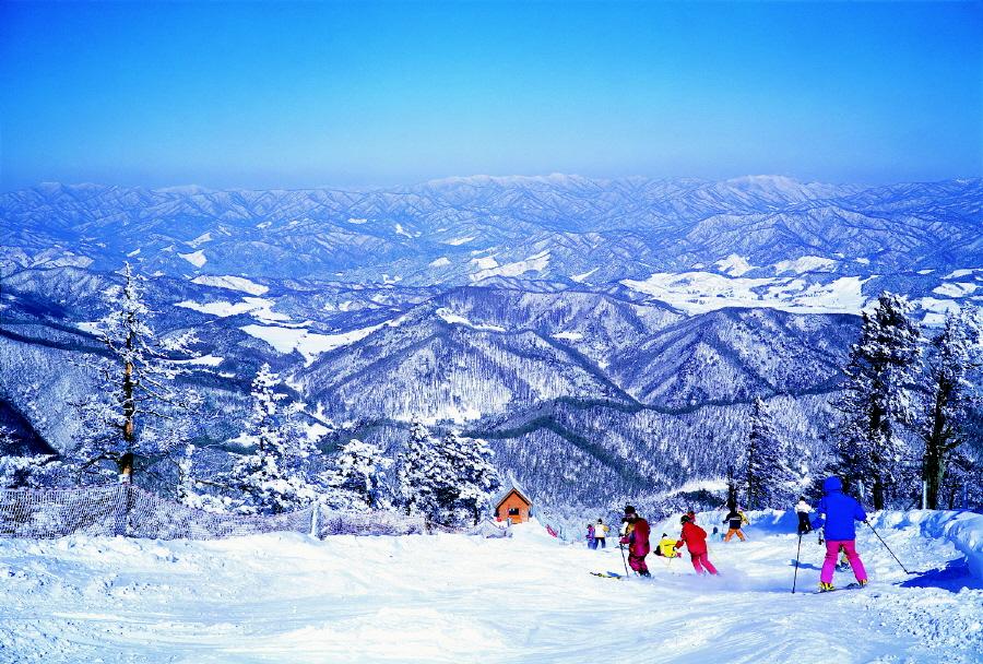 PyeongChang Mountain Cluster 평창 마운틴 클러스터