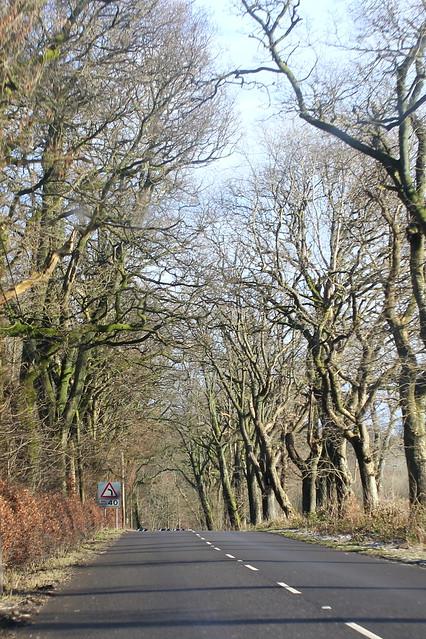 A811 heading east towards Buchlyvie