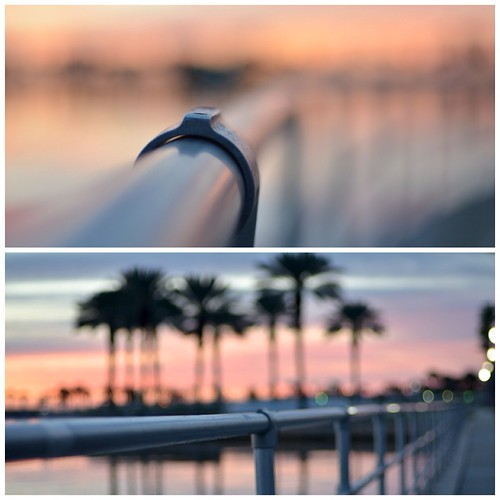 sunrise fence stpetersburg happy focus florida bokeh rail 50mm14 friday hff shootwideopen