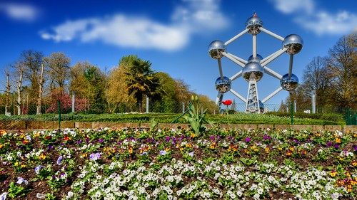 atomium aaa belgium belgique bruxelles brussels sky bluesky flower flora flowers bloom blossom trees city town landscape cityscape leica leicaq serenity walk hensyasmine