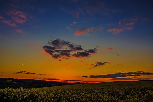 Gold in der Abendsonne