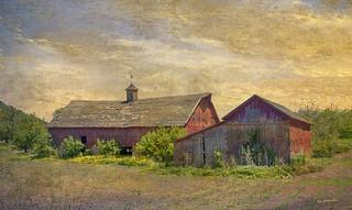Aunt Mert's farm | by ronphoto2009