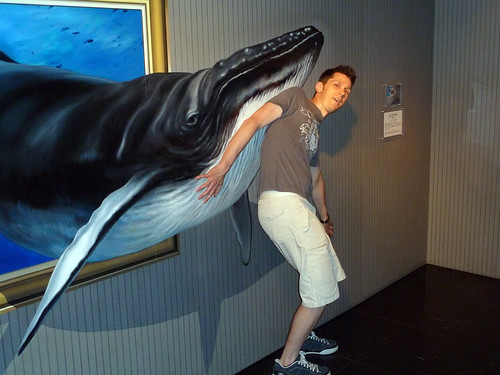 Whales @ Trick Art Museum | by Rob Young