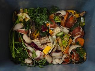 Compost SDIM0891   by StefanSzczelkun