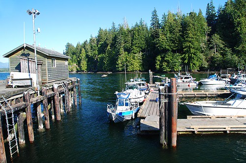 Port Renfrew, South Vancouver Island, British Columbia, Canada