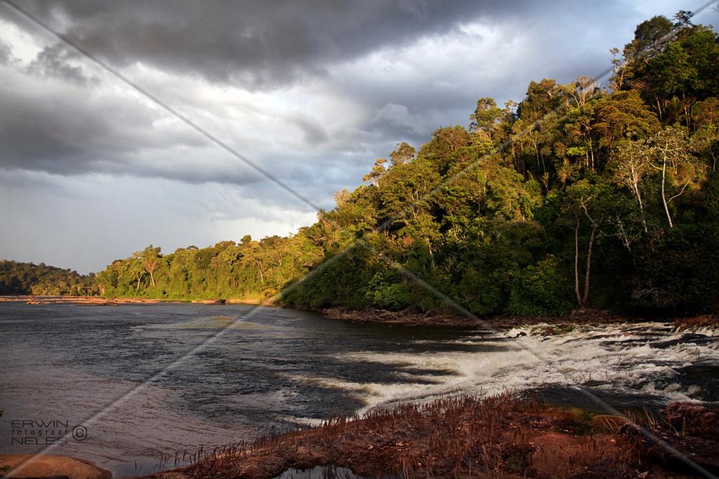 LANDSCAPE RIVER TAPANAHONY RIVER SURINAM AMAZONE SOUTH-AMERICA