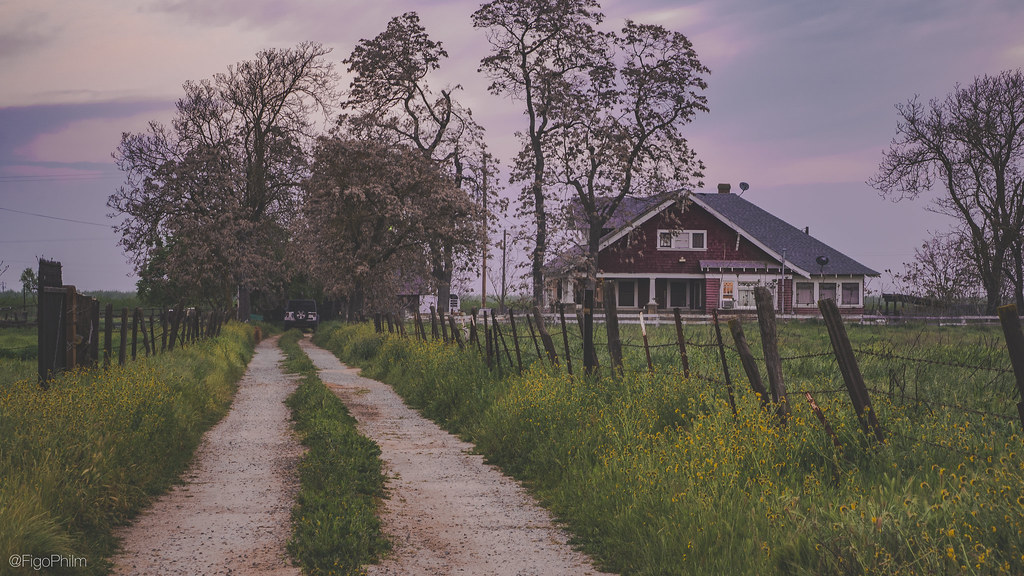 country home color