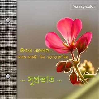 Bengali Good Morning Scrap Crazycolorscrapcom Flickr