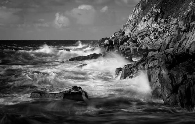 Petrel Sea