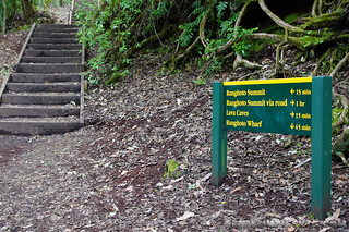 Rangitoto Island, Auckland   by Benjamin Beck