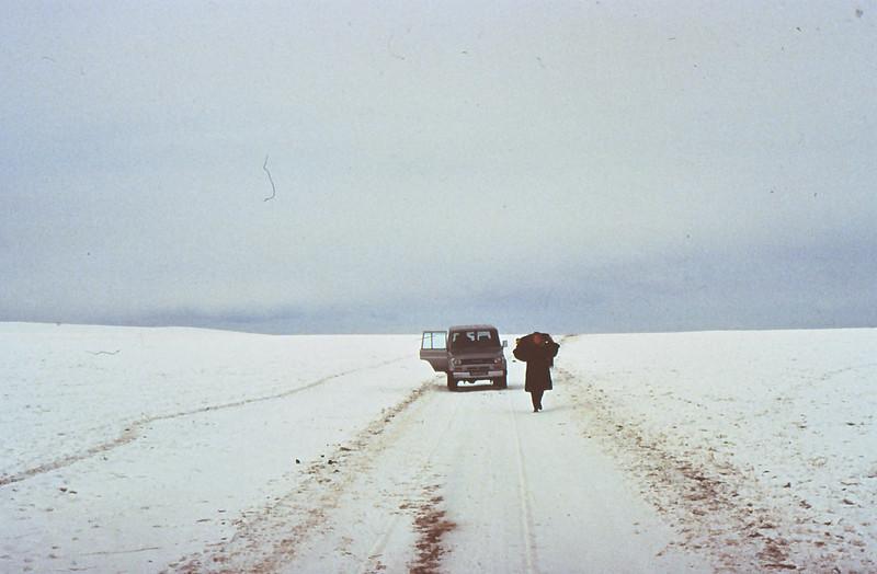 MONGOLIA 1994 01-0006