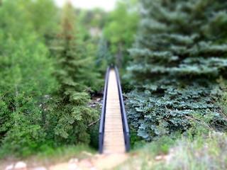 Footbridge on the Rio Grande Trail, Aspen Colorado   by danxoneil