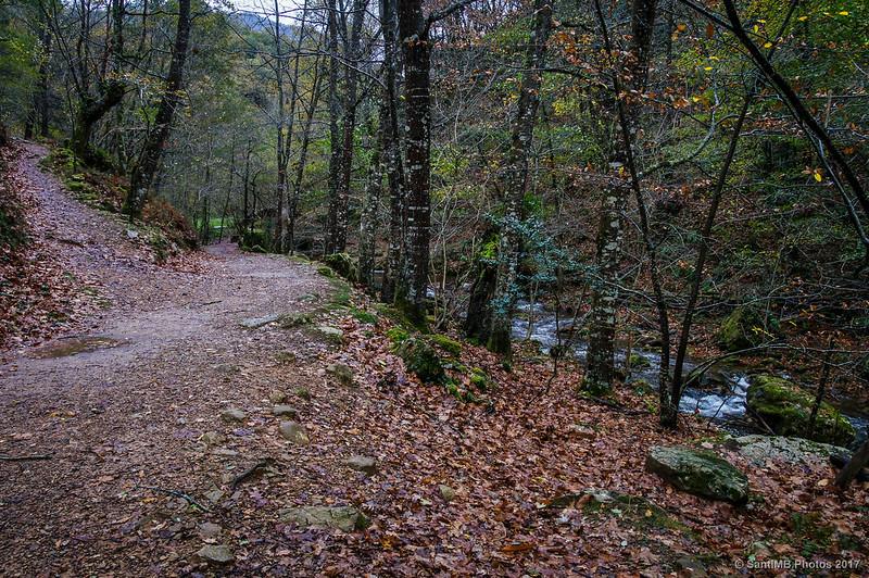 El río y los dos caminos