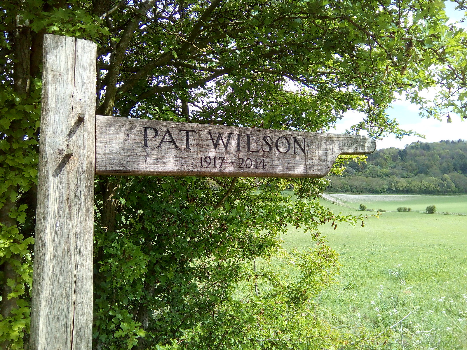 Pat What a great epitaph