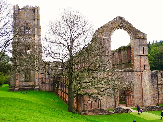 Fountain's Abbey, North Yorkshire. (mobile phone shot)