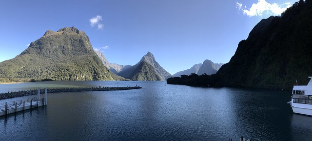 Milford Sound as seen from the docks