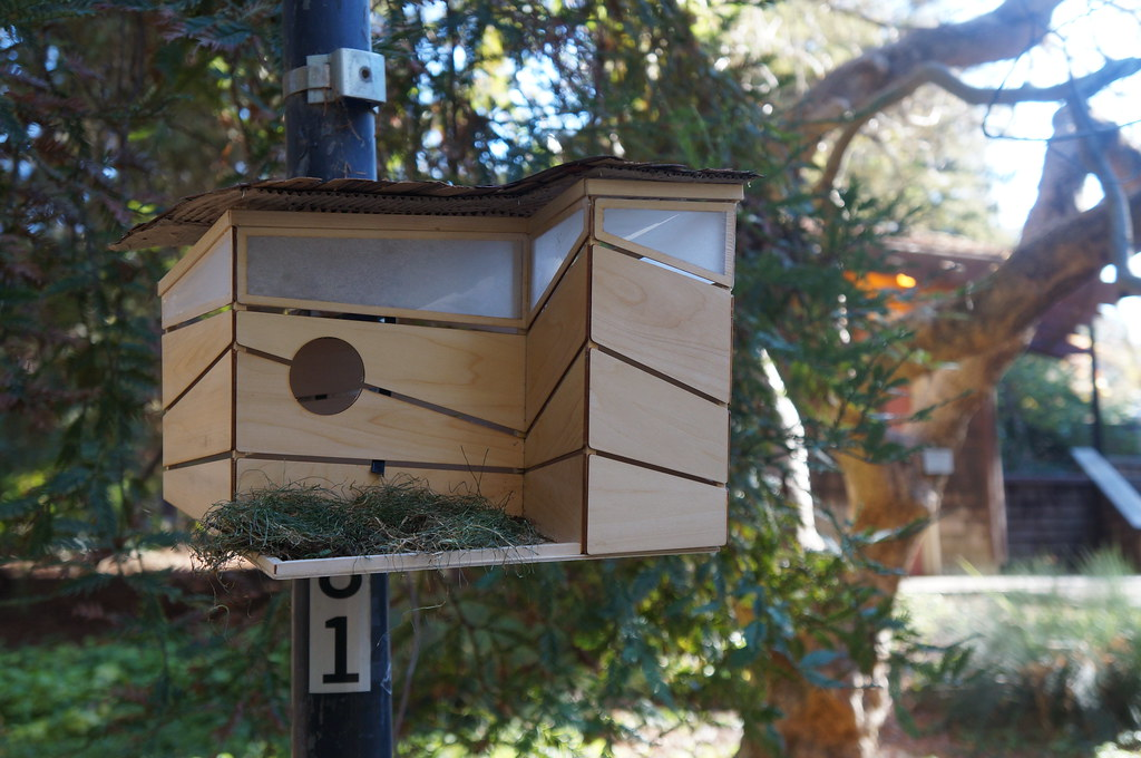 Birdhouses designed by students from Ann Savageau's Sustainable Design class