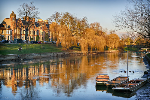 cambridge sunlight color colour golden scene willows punts rivercam drained